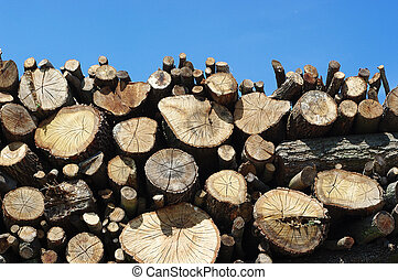 stack of wood on the truck