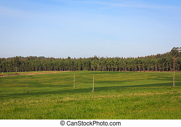Blue sky over green plain field on Portugal