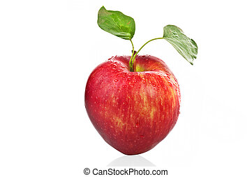 Red apple with leaves on white