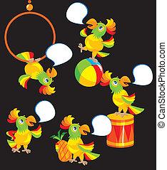 Set of parrot cartoons