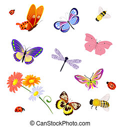 butterfly insects bee ladybug