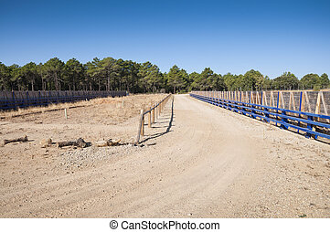 Wildlife passage - They are structures that allow animals...