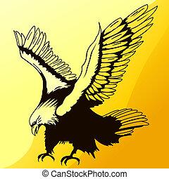 aterragem, águia, silueta