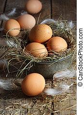 布朗, 蛋, 木頭, 背景, 新鮮