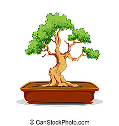 Bonsai Tree - illustration of bonsai tree in earthen pot on...