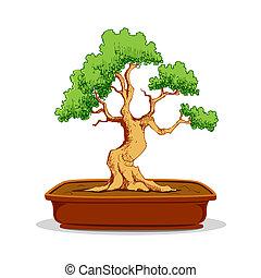 Bonsai Tree - illustration of bonsai tree in earthen pot on...
