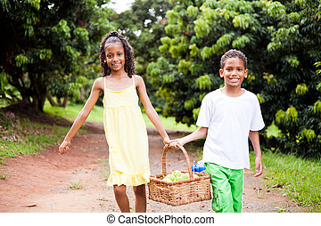 kids carrying a basket of apple - two happy kids carrying a...