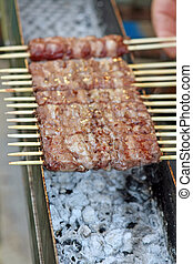 kebabs of lamb and veal cooked grilled on the spit - tasty...