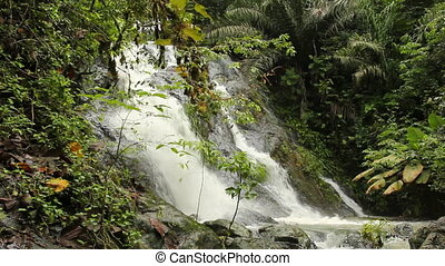 Waterfall in rainforest - in the Choco Biological Region in...