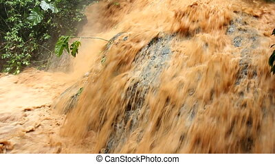 Severe flash flood - Mud and water pouring down a jungle...