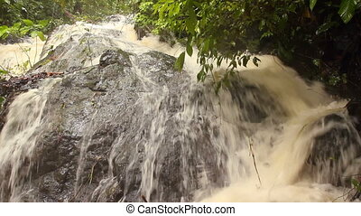 Rainforest river - In Western Ecuador swollen after heavy...