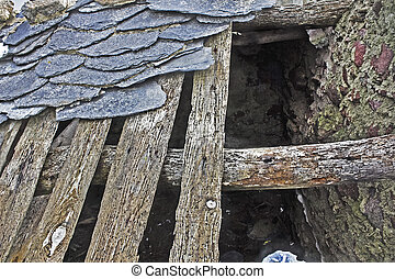 roof destroyed attacked by woodworm