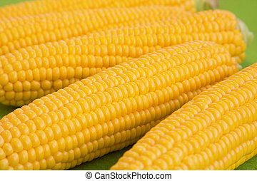 Corn on cob - Bright juicy corn on cob