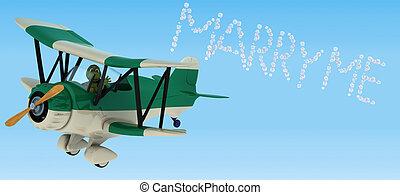 tortoise flying a biplane sky writing