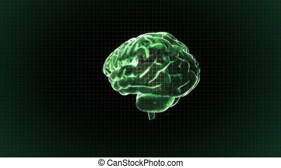 green brain rotate with grid backgr - X-ray Brain to...