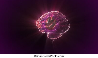 red brain rotate flare - X-ray Brain to represent the theme...