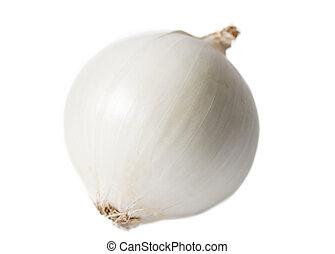 White onion.