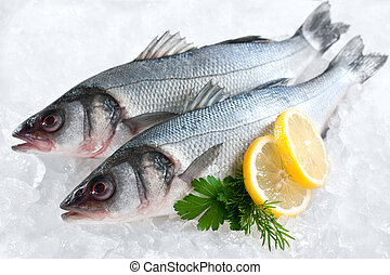 Seabass (Dicentrarchus labrax) on ice at the fish market