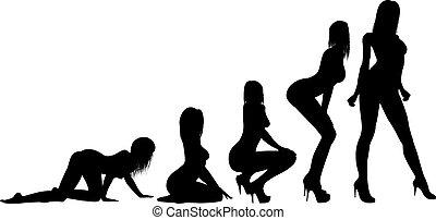 women silhouette - Darwin's theory of evolution