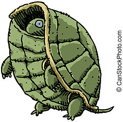 Shy Turtle - A cartoon turtle peeks out from inside his...
