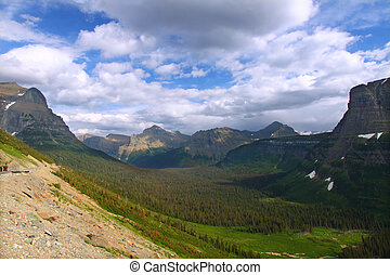 Logan Pass Forests Glacier National Park - Mountain and...