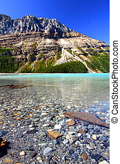 Peyto Lake Scenery - Water Level View of Peyto Lake in Banff...