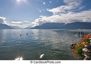 Fine lake Leman - Lake Leman in fine autumn day and floating...