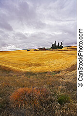 Small farm in fields of Montana after harvesting. More...