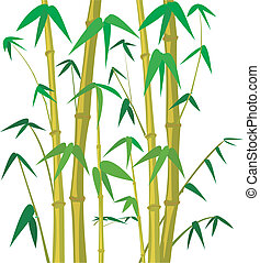 bamboo tree - bamboo background, bamboo plant, bamboo forest