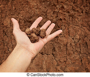 Hand with lumps of clay ground - The hand with lumps of clay...