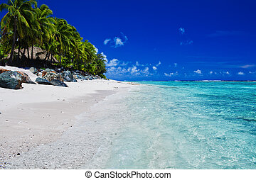 Tropical beach with palms on Cook Islands - Tropical beach...