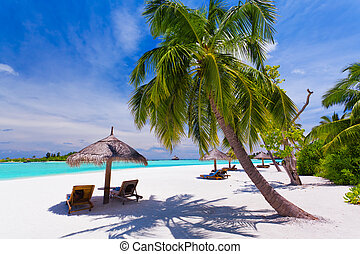 Deck chairs under palm trees on a tropical beach - Deck...
