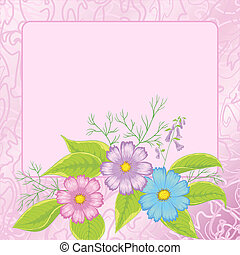 Background, flowers cosmos and frame - Floral pink...