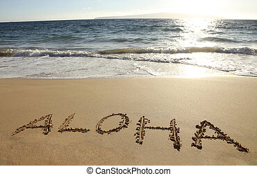 Aloha - the word Aloha written in a sandy beach