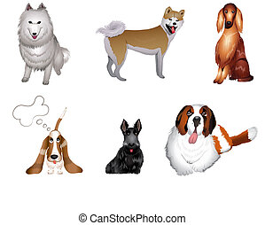 set breeds of dog vector illustrations eps 10