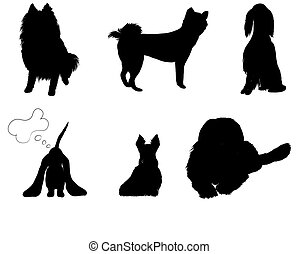 silhouettes set breeds of dog vector illustration eps 8