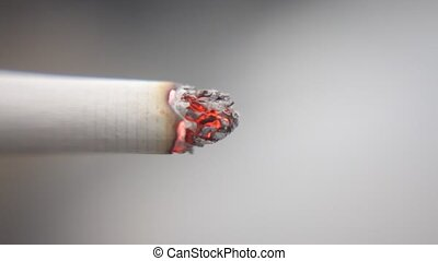 macro shot of burning cigarette