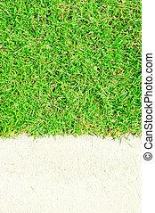 grass on white floor