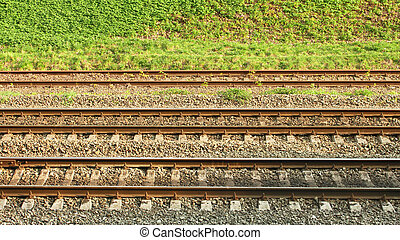 Parallel rail lines on the background of roadside covered...