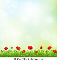Red Poppy And Grass Border