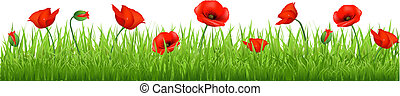 Red Poppy Border, Isolated On White Background, Vector...