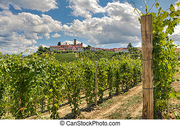 Vineyards and small town Castiglione Falletto, Italy -...