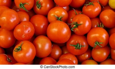 tomato - fresh vegetables