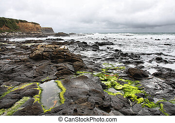 New Zealand - Curio Bay - New Zealand. Catlins part of...