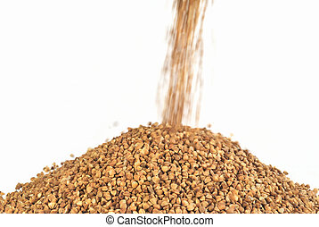 The yield of buckwheat