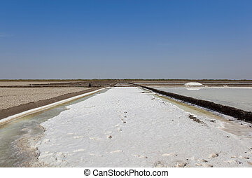 salt production in gujarat - landscape of gujarat with a...