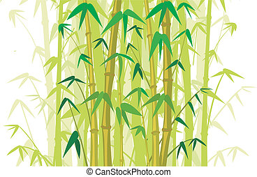 bamboo background - bamboo tree, bamboo wood, bamboo bush