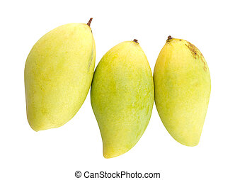 Mangoes - Fresh tropical mangoes on a white background