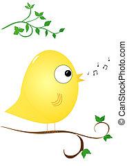 Bird singing - Yellow cute bird singing in tree