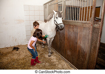 Boy and Girl Grooming a Horse - Little kids - boy and girl -...